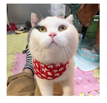 Load image into Gallery viewer, Pet Cat Scarf with for Kitten/Kitty/Puppy