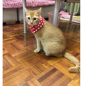 Pet Cat Scarf with for Kitten/Kitty/Puppy