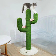 Load image into Gallery viewer, Cute Cactus Cat Climbing Frame