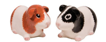 Guinea Pig Salt and Pepper Shakers