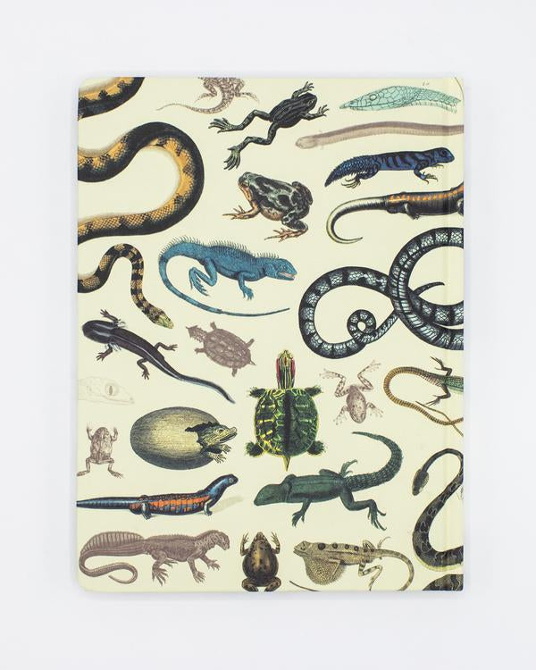 Herpetology Hard Cover Journal - Lined/Grid