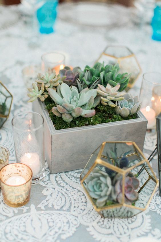 Succulent Centerpieces | 6 Stunning Ideas for a Silver & Sage Wedding | My Wedding Favors