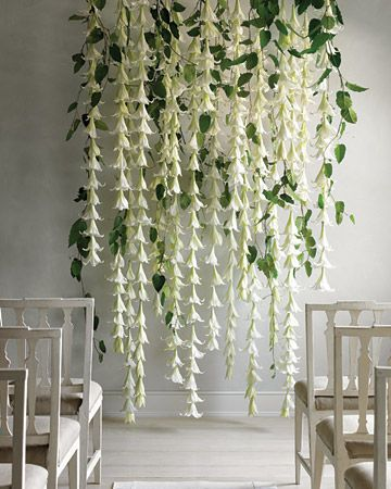 White Lily Backdrop | Ruffled