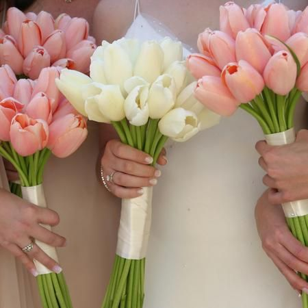 Spring Wedding Flowers: Tulips