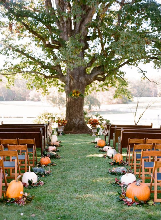 Pumpkin Wedding: Aisle