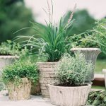 Greenery Wedding Inspiration: Various Planters