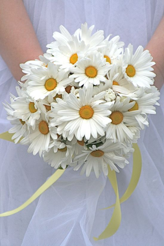 Daisies | 7 Summer Wedding Bouquets | My Wedding Favors
