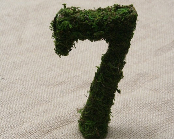 Table Numbers: Moss