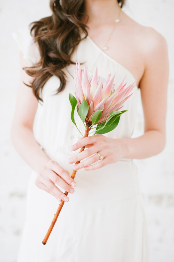 Single Stem | 6 Fancy Floral Bouquets to Incorporate Into Your Wedding | My Wedding Favors