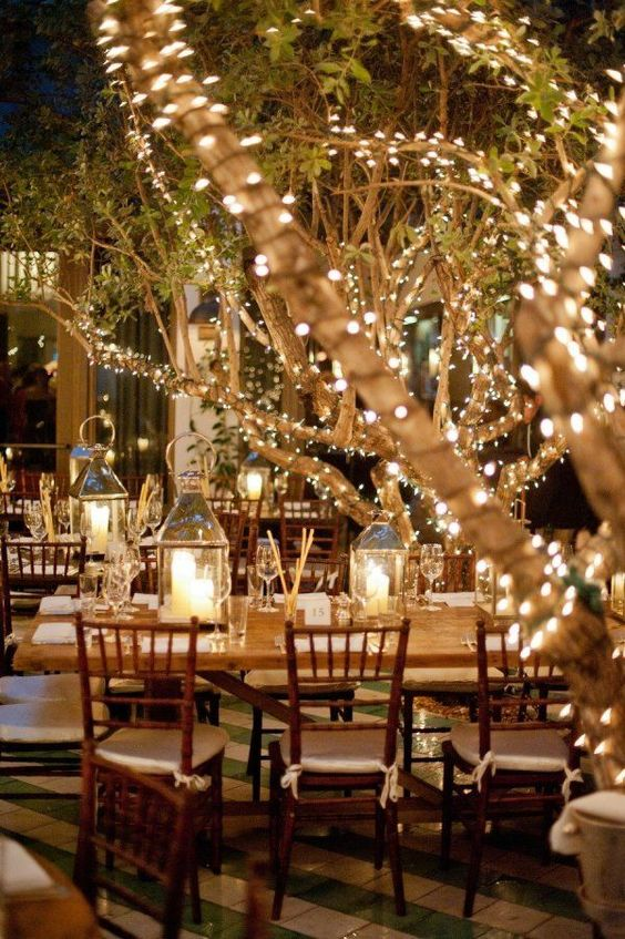 Twinkle Lights Around Trees | Decorating a Wedding With Twinkle Lights | My Wedding Favors