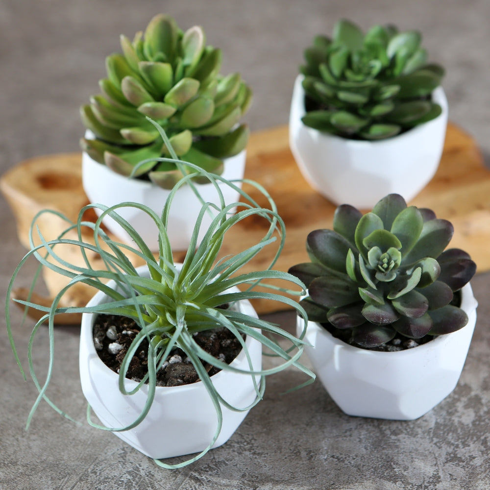 Modern Garden Geometric White Planter (Set of 4)