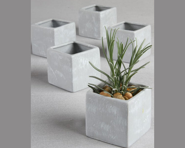 Plain Square Flower Pots (Set of 5)
