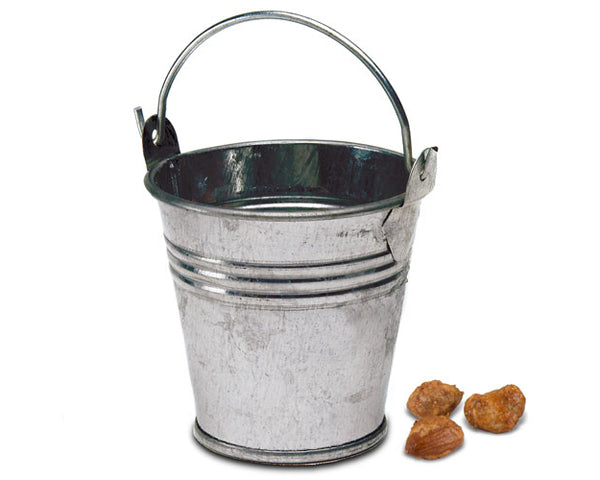 Miniature Metal Pails Silver (Set of 12)