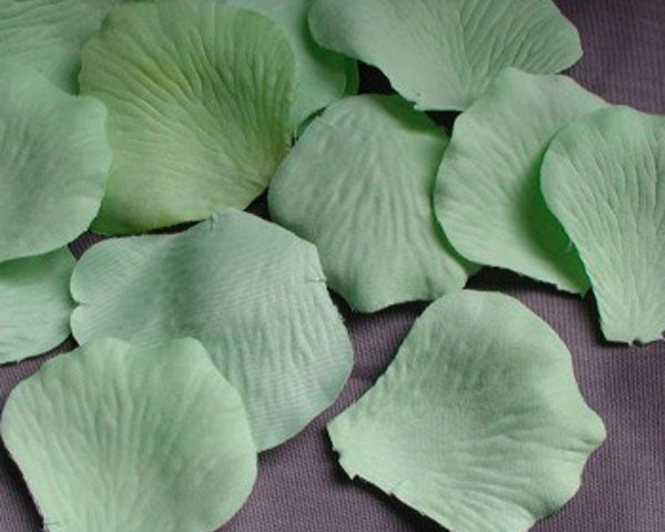 Flower Petals (Set of 100) - Many Colors Available
