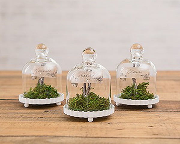 Miniature Glass Bell Jar - Set of 4 (Personalization Available)
