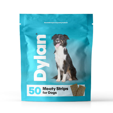 Dylan Meaty Strips Dog Treats