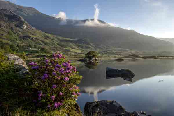 This is a beautiful image of the Black Valley lake in county Kerry, Ireland. Here, resting obscurely among the many hills and mountains is this hauntingly beautiful lake. This area represents the people and the environment from which Donnta comes.