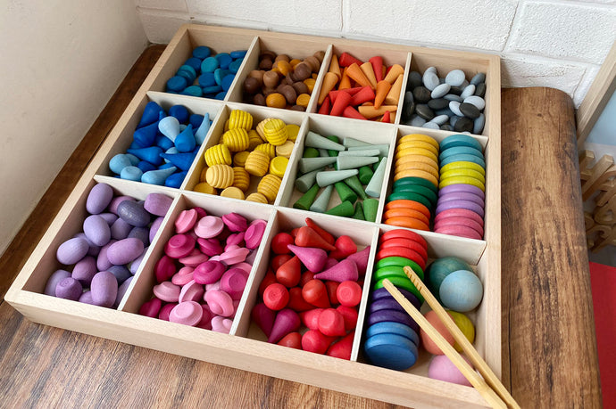 *New* Loose Parts Storage Tray - 12 Compartments