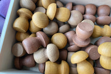 Load image into Gallery viewer, *PREORDER* Coloured Loose Parts Set with Stackable Trays