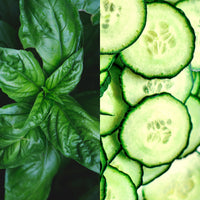 Basil & Cucumber Fragrance