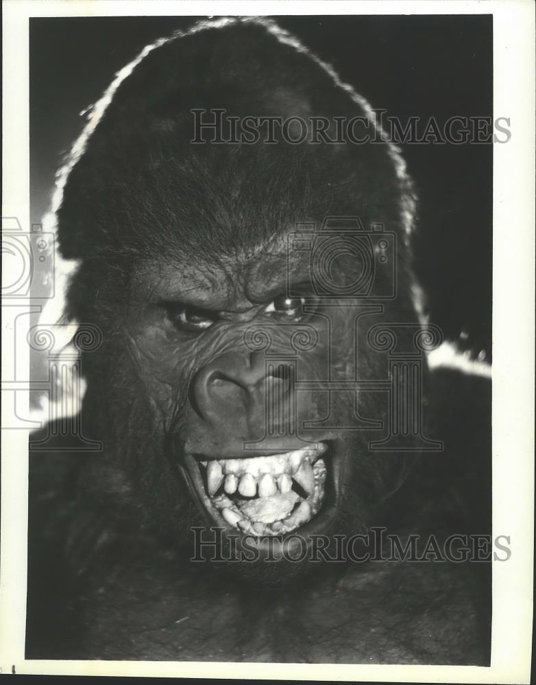 1980 Press Photo King Kong - spp04413 - Historic Images