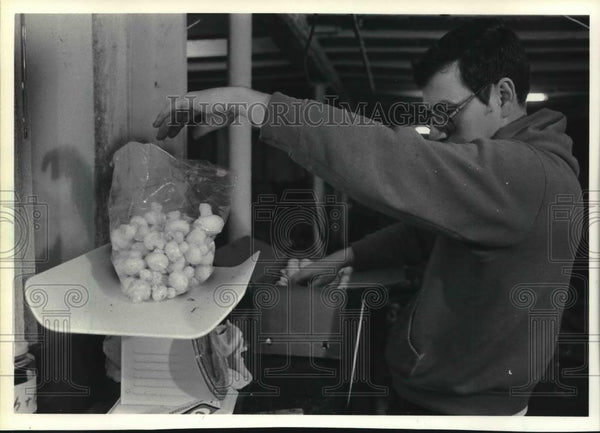 Press Photo Lennart Henderson weighs mushrooms to send to market. - mjb70940 - Historic Images