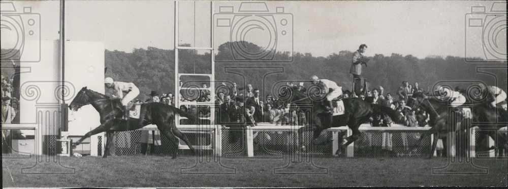 "1951 Press Photo ""Tanteme"" wins at Arc De Triomphe horserace - Historic Images"