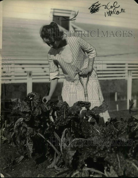 1922 Press Photo Mrs Burbank in her home garden - nea32087 - Historic Images