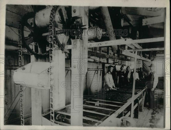 1921 Press Photo Raisins Going to the Seeder - nea36857 - Historic Images