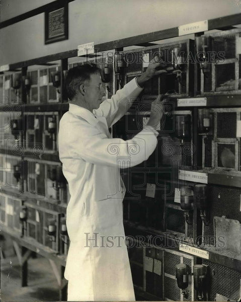 1924 Press Photo Professor Slonaker & rats in his labs - Historic Images