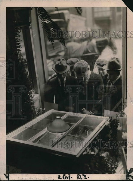 1921 Press Photo Beans Growing by Electricity in New York Store Window - Historic Images