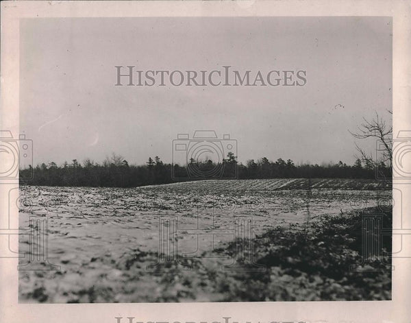 1919 Press Photo Billy Dansey Case field - Historic Images