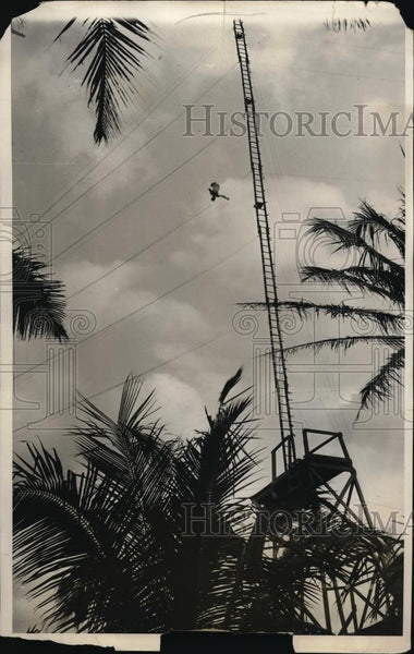 1931 Press Photo Tom Sellers of England completing 150 foot dive in Miami Beach - Historic Images