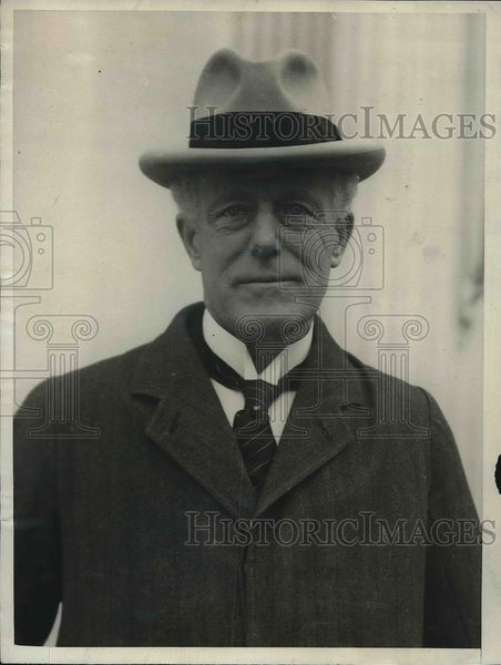 1925 Press Photo Hon, Sir Willoughby Dickinson of Privy Council - Historic Images