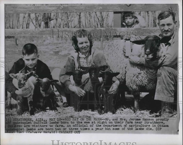 Press Photo Strathmore, Alta. Mr s& Mrs Jerome Hanson & kids with their sheep - Historic Images