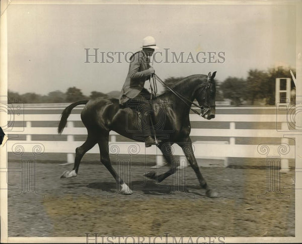 1928 Press Photo Mrs. Charles Mickle Jr. Cathedral horse show - Historic Images