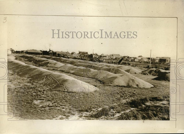 1926 Press Photo Southern Kansas pile of wheat wont fit in silos - neb60905 - Historic Images