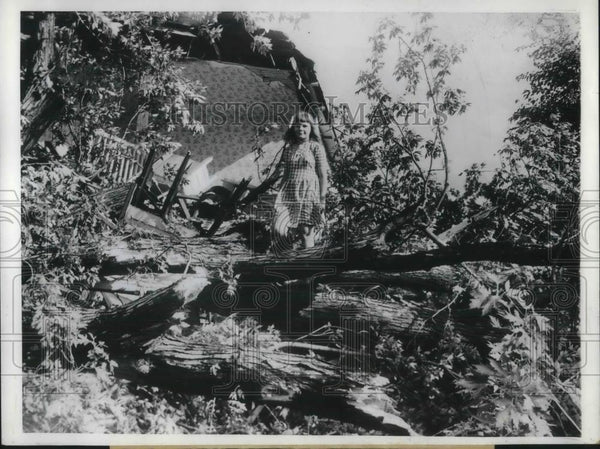 1946 Press Photo Shirley Dennison, 12, stands on tree which fell on her home - Historic Images