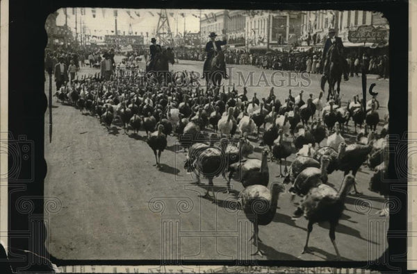 1922 Press Photo Regiment of Turkey marching at Thanksgiving Day Battlefield. - Historic Images
