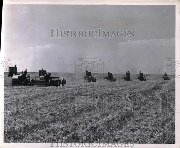 1956 Press Photo Combising Wheat Deaf Smith County - Historic Images