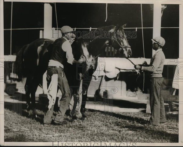 1932 Press Photo Racehorse Araba gets rubdown at Hialeah Park in Fla - nes15418 - Historic Images