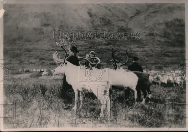 1921 Press Photo WT Topp at Deft Supt of Alaskan School inspecting reindeers - Historic Images