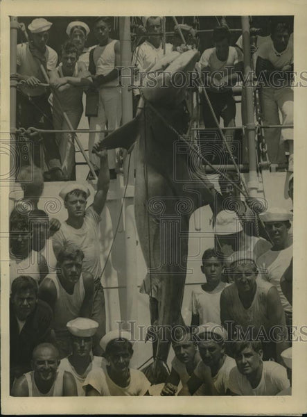 1924 Press Photo Monster Shark Caught by Uncle Sam's man of war - Historic Images
