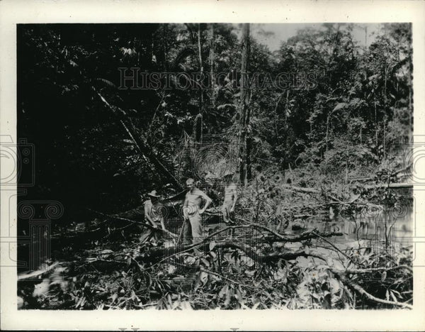 1931 Press Photo The clearing operation at the Nicaragua Canal - Historic Images