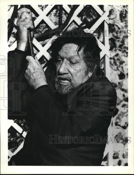 1981 Press Photo Richard Boone in The Big Sleep - cvp00037 - Historic Images