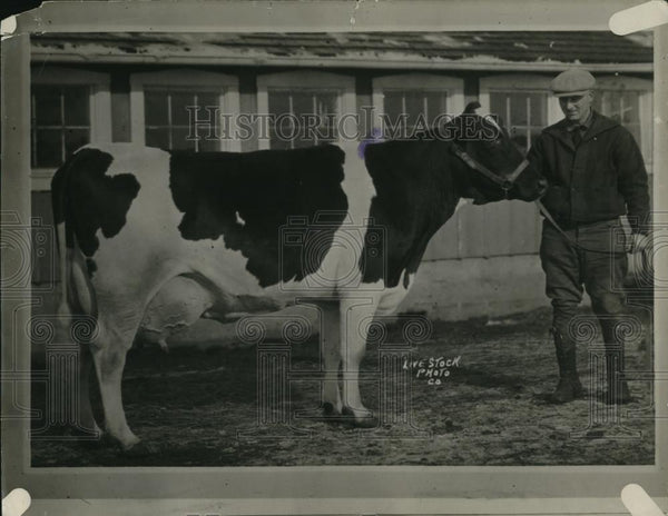 1927 Press Photo Man with a cow - Historic Images