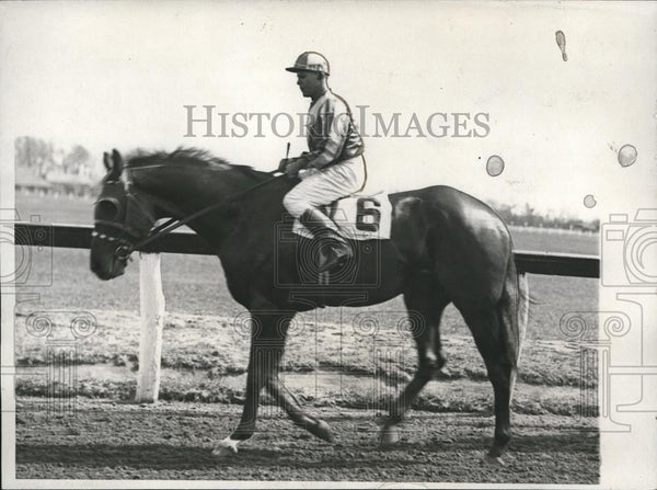 1932 Press Photo Brandon Mint candidate for forthcoming Kentucky Derby - Historic Images