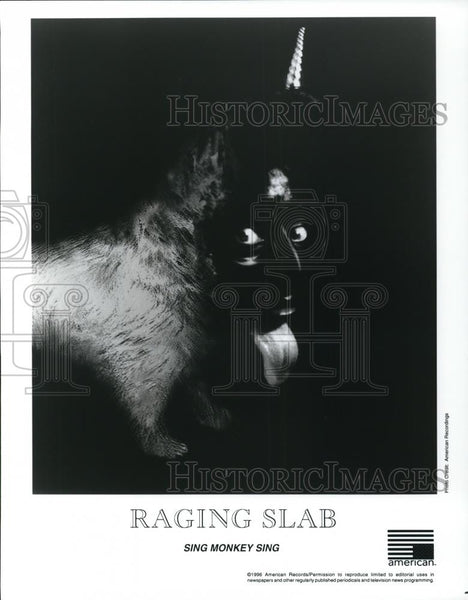 1996 Press Photo Raging Slab Sing Monkey Sing - cvp28307 - Historic Images