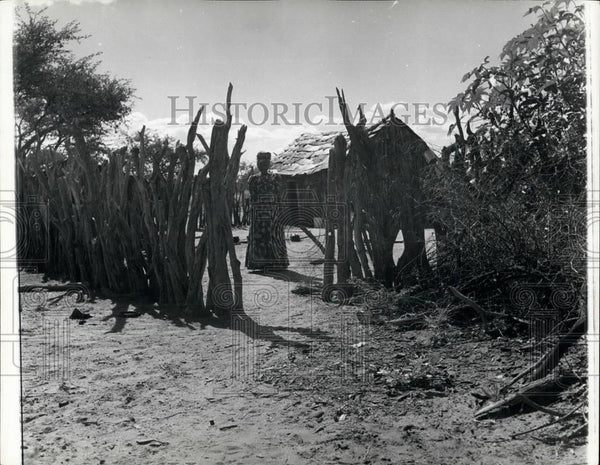 Press Photo Man In South West Africa Herero Hut - Historic Images