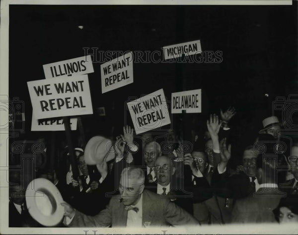 1932 Press Photo Some of the state delegates with banners and state standards - Historic Images